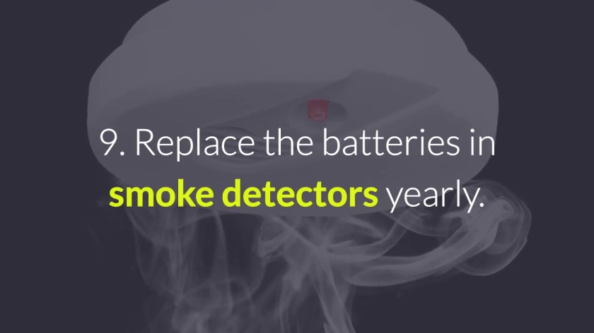 Smoke Detector Batteries